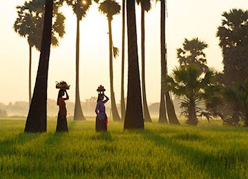 Women walking through a rice field in Bali