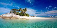 Palm trees on Belitung Island