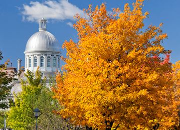 White domed building behind orange and green Autumn colors