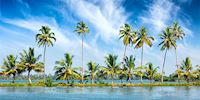 Short and tall palm treese on a strip of land surrounded by blue water and blue sky
